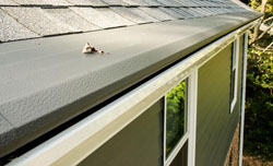 Gutters Hillsborough NC